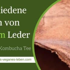 Verschiedene Arten von veganem Leder