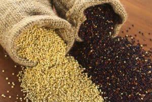 amaranth und quinoa
