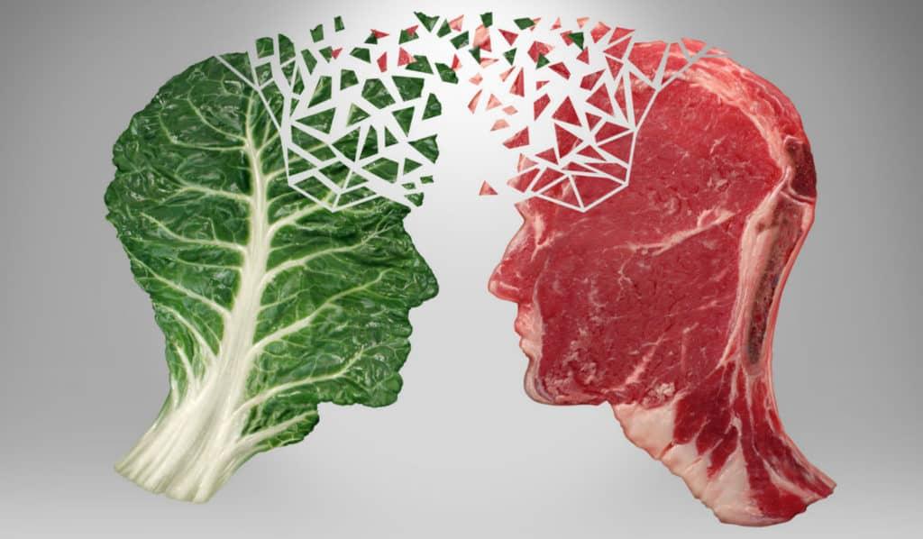 omnivore zu vegan