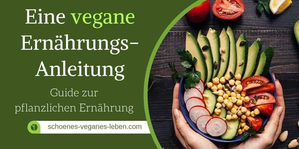 Vegane Ernährungs-Anleitung – Ein Guide zur pflanzlichen Ernährung