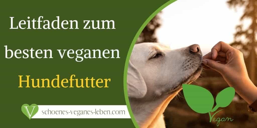Ein Leitfaden zum besten veganen Hundefutter